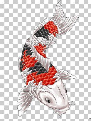 Koi Tattoo Irezumi PNG