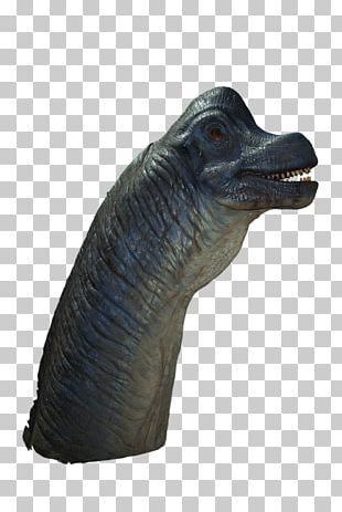 Brachiosaurus Hollywood Jurassic Park Velociraptor Film PNG