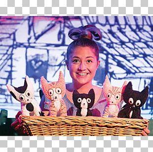 Pitschi Brighton Edinburgh Festival Fringe Cat Theatre PNG