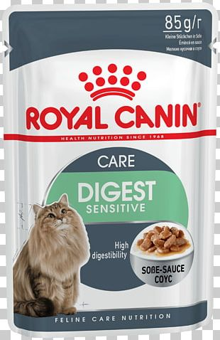 Cat Food Dog Royal Canin Pet PNG