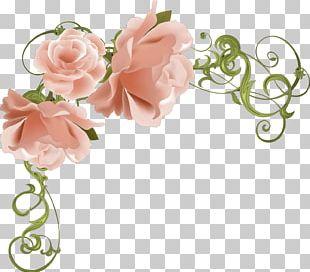 Cut Flowers Rose Floral Design PNG