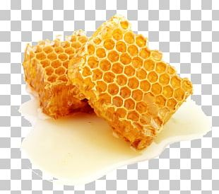 Honey Bee Honeycomb Comb Honey PNG