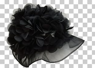 Hat Glove PNG