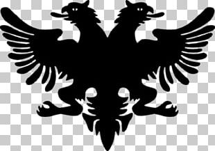 Flag Of Albania Coat Of Arms Of Albania National Flag PNG