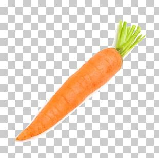 Carrot Vegetable Radish PNG
