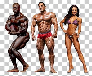 Fitness And Figure Competition Female Bodybuilding Muscle Human Body PNG