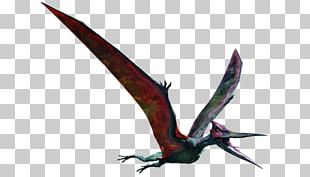 Pteranodon Dinosaur Mosasaurus Ankylosaurus Jurassic Park PNG