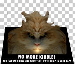 Cat Food Gerbil Canned Fish Veterinarian PNG