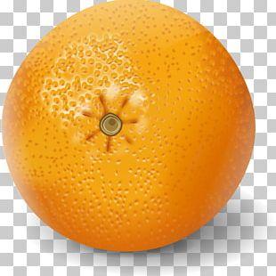 Clementine Orange Juice Valencia Orange Mandarin Orange PNG