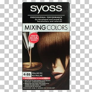 Human Hair Color Hair Coloring Color Mixing Hairdresser PNG