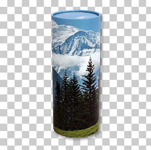 Urn Biodegradation Vase Scattering Cremation PNG