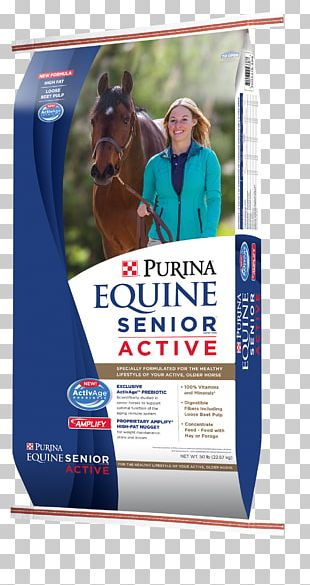 Horse Equine Nutrition Foal Nestlé Purina PetCare Company Purina Mills PNG