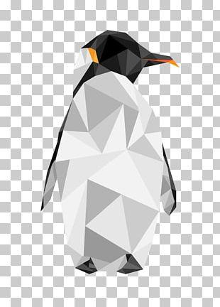 King Penguin Flightless Bird Animal PNG