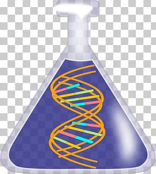 DNA Nucleic Acid Double Helix Free Content PNG
