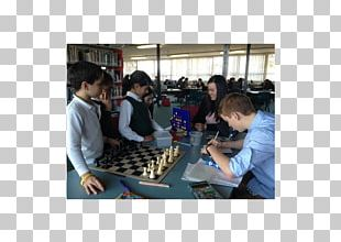 University Of New South Wales Chess School Of Education Primary Education PNG