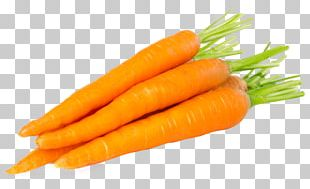 Carrot Soup Baby Food Vegetable PNG