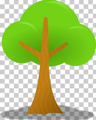 Tree Oak Free Content PNG