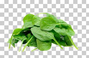 Juice Organic Food Spinach Leaf Vegetable PNG