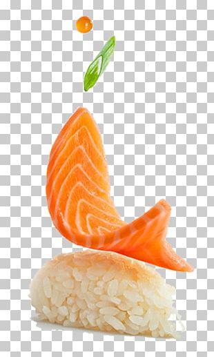 Japanese Cuisine Sushi Smoked Salmon PNG