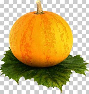 Butternut Squash Cantaloupe Korean Melon Pumpkin PNG