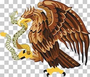 Mexico Snake Bald Eagle PNG