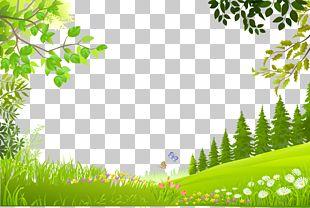 Nature Landscape PNG