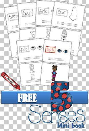 Paper Kindergarten Pre-school Sense Education PNG