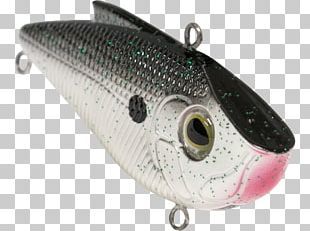 Spoon Lure Northern Pike Plug Bony Fishes Fishing Baits & Lures PNG