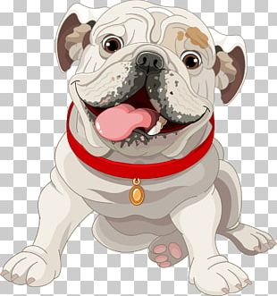 French Bulldog Puppy Illustration PNG