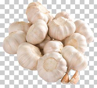 Garlic Potato Onion Vegetable Computer Icons PNG
