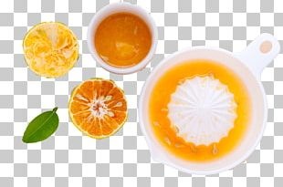 Orange Juice Cocktail Lemon Tangerine PNG