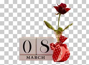 International Womens Day March 8 Woman Wish Greeting Card PNG