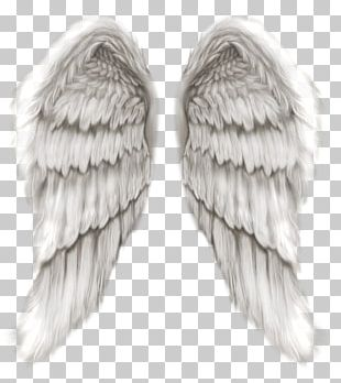 Angel Michael PNG