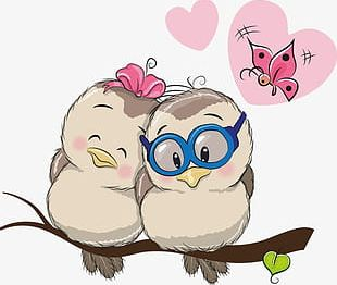 Love Birds PNG