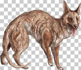 Dog Breed Fur Wildlife PNG