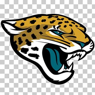 Jacksonville Jaguars New England Patriots Buffalo Bills Miami Dolphins 2015 NFL Season PNG