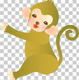 Mouse Cat Primate Monkey PNG