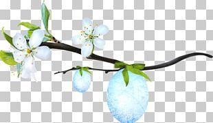Twig Desktop Leaf Petal Computer PNG