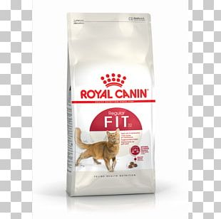 Cat Food Kitten Persian Cat Dog Royal Canin PNG