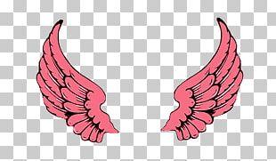 Buffalo Wing Wingstop Restaurants PNG