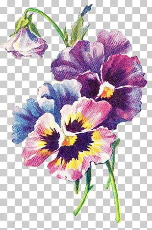 Floral Design Art Pansy Decoupage PNG