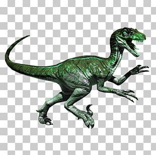 Primal Carnage: Extinction Velociraptor Jurassic Park: The Game Dinosaur PNG
