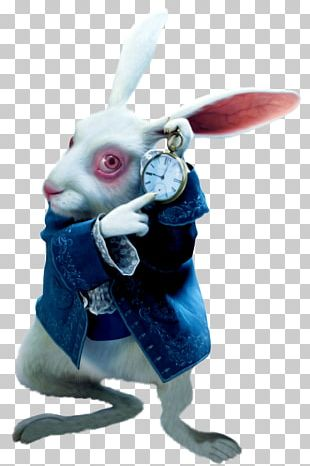 White Rabbit The Mad Hatter Red Queen Alice Queen Of Hearts PNG