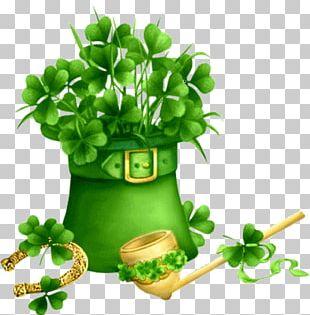 Saint Patrick's Day Desktop Irish People PNG