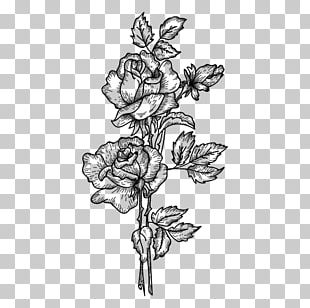 Drawing Watercolor Painting Sketch PNG