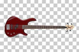 Fender Precision Bass Bass Guitar Cort Guitars Bassist PNG