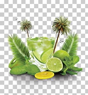 Mojito Cocktail Flyer PNG