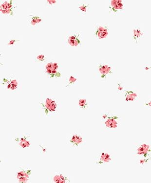 Creative Floral PNG