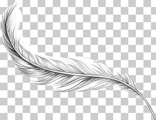 Bird Feather Tattoo Artist Ankle PNG