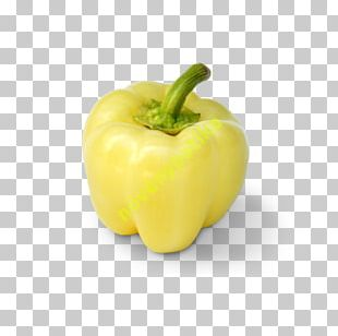 Chili Pepper Yellow Pepper Bell Pepper Peppers Pimiento PNG